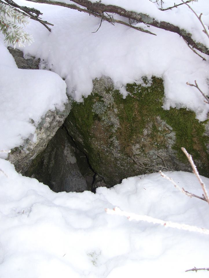 En av inngangene. Denne hadde reven valgt å bruke denne gangen.