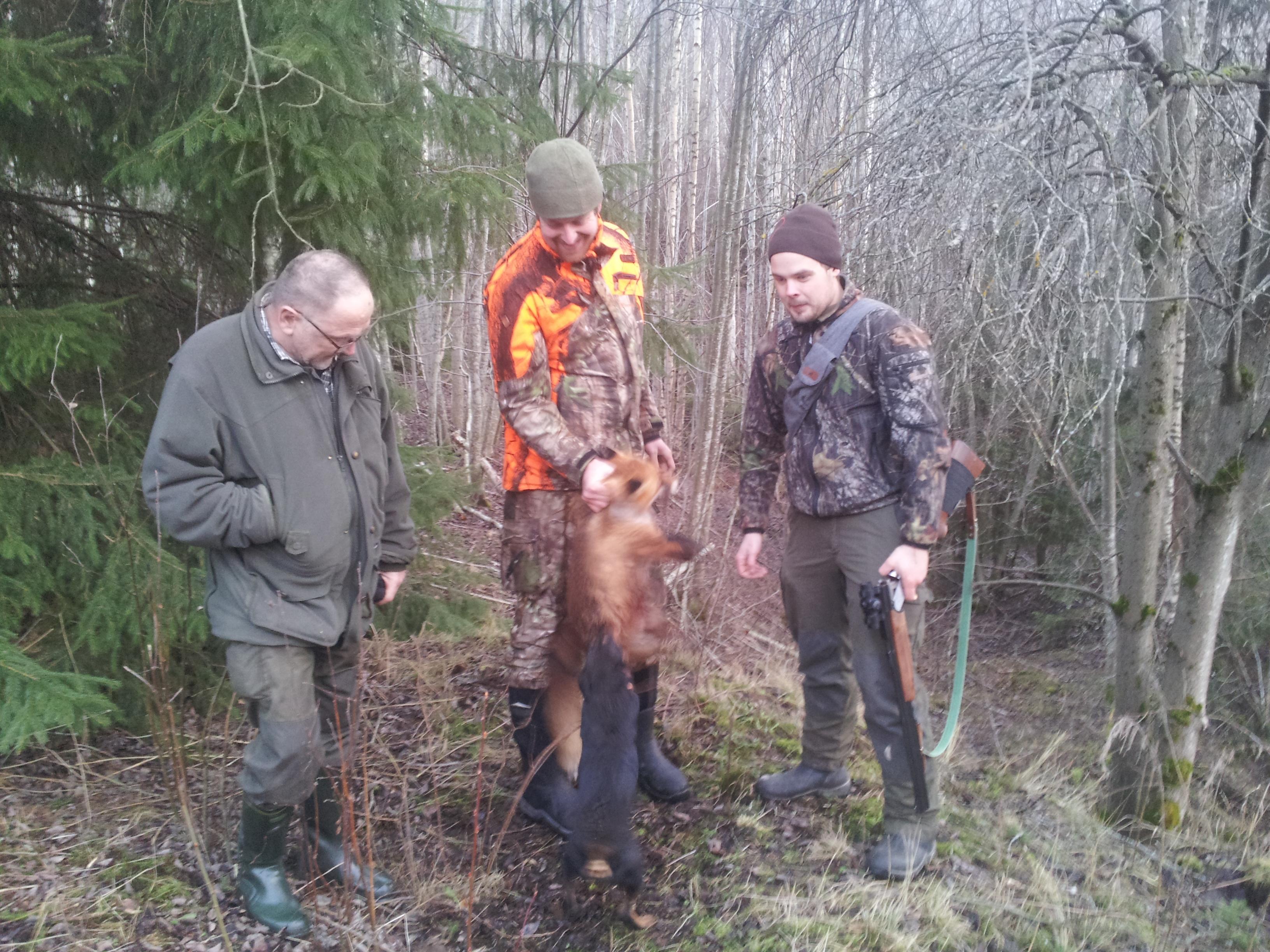 Dommer Hans Hjort, meg og Martin med reven. Tøffy bare forsikrer seg om at den er skikkelig død.