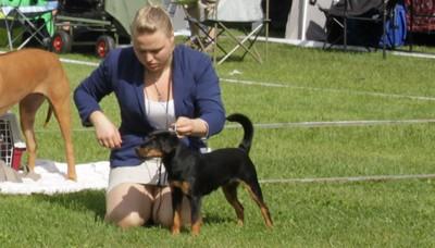 Chanett og Tøffy på Nesbyen 2012 der hun ble BIR og fikk Cert.