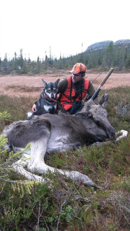 Figo og Anders med første elgen
