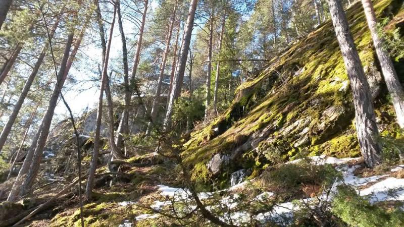 Bratt og uten snø, Kolsrud
